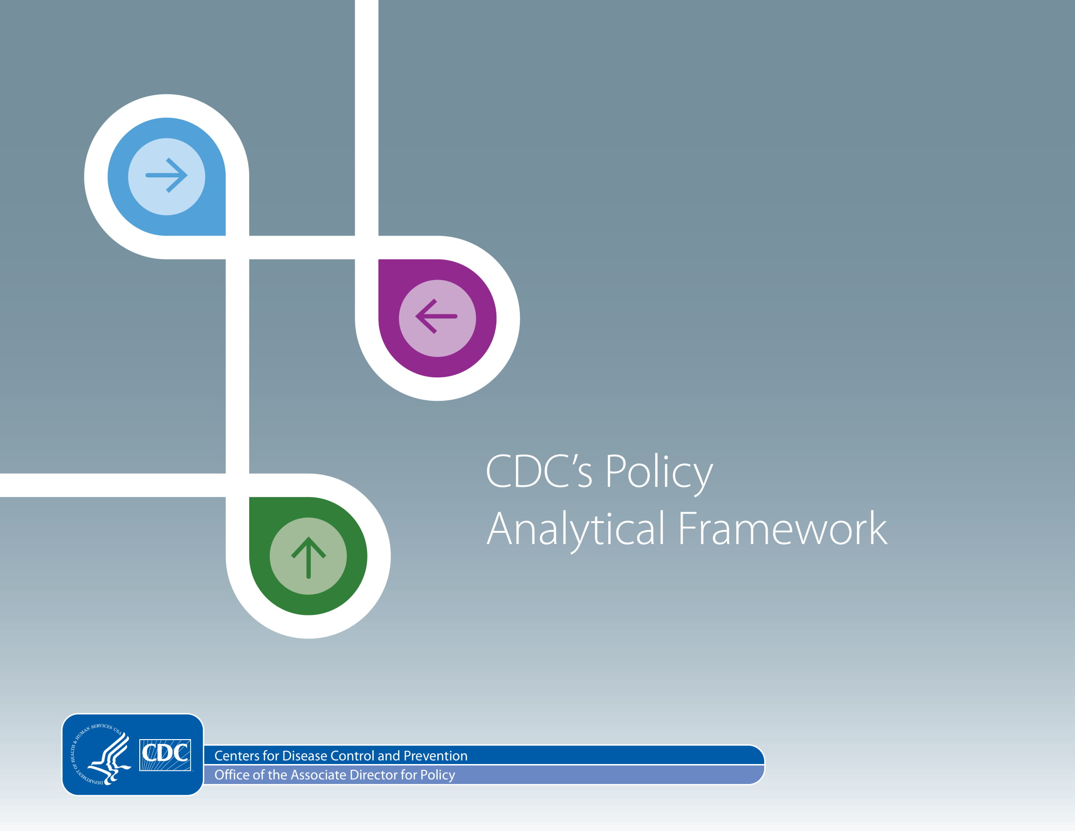 policy analytical framework example 1