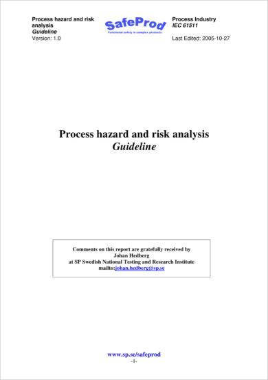process hazard and risk analysis example