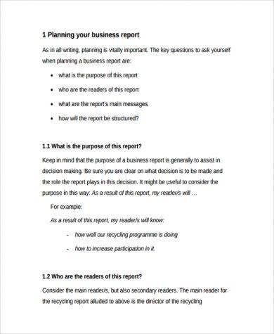 professional business planning report example1