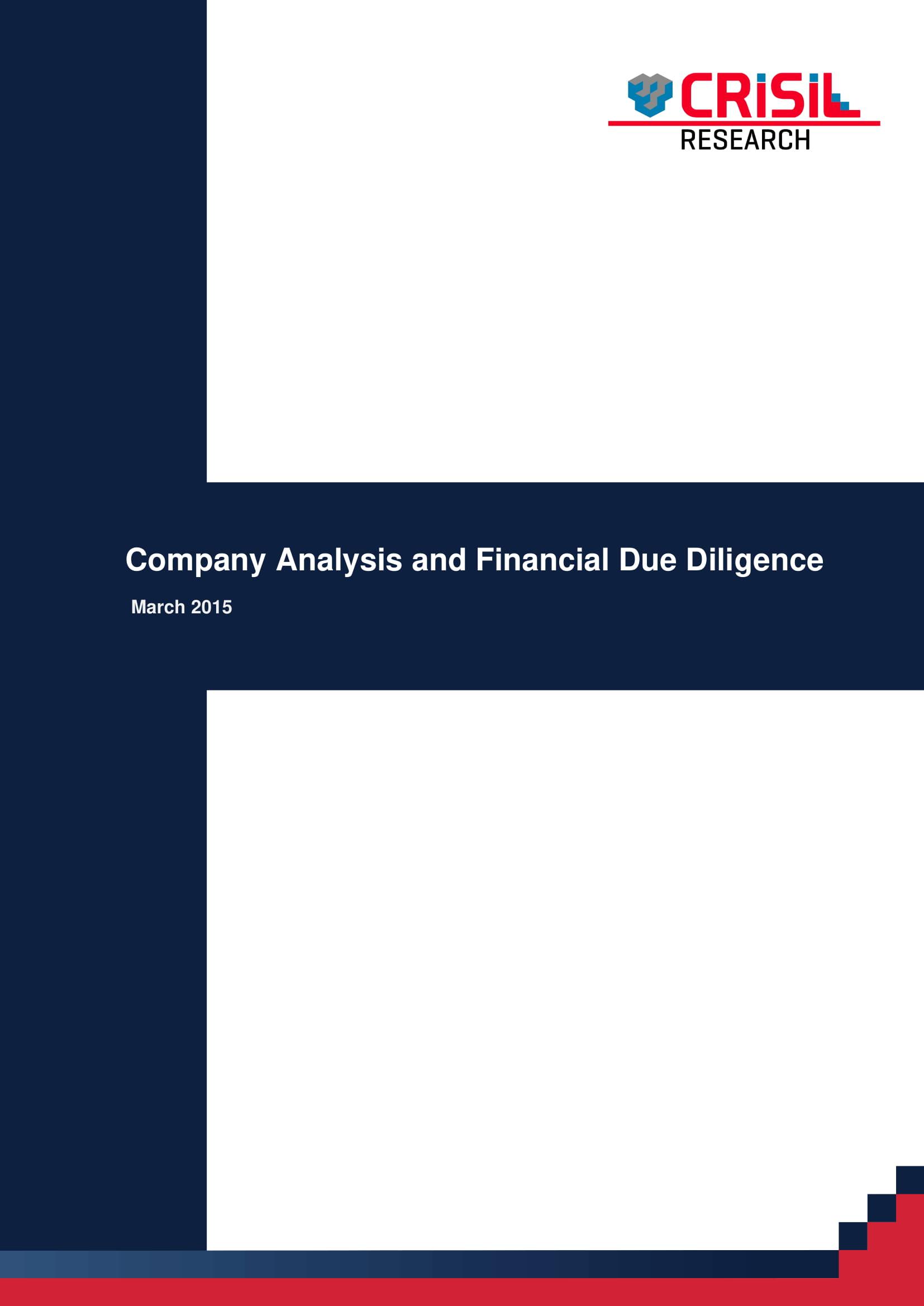 professional company analysis example