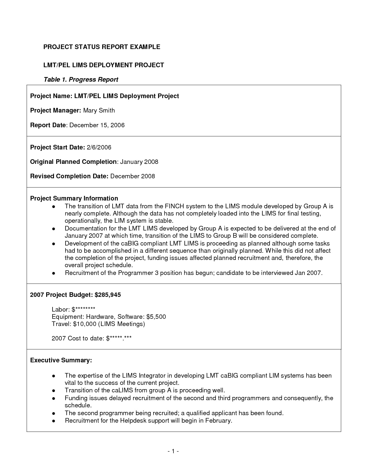 business project report example pdf
