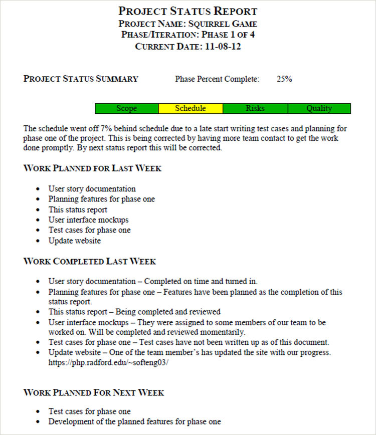 how to write a good project progress report  how to write