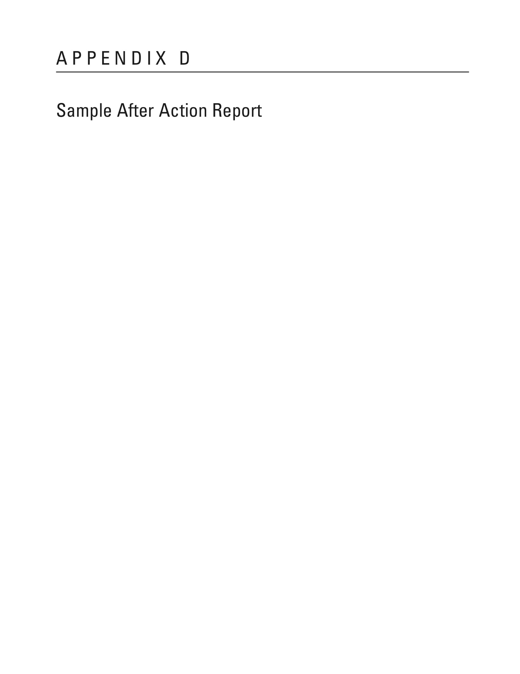 simple after action report example 01