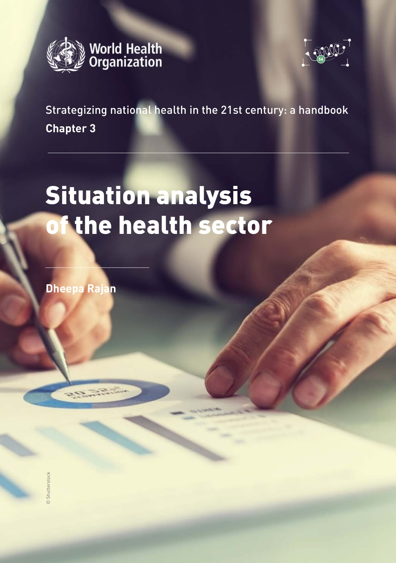 situation analysis of the health sector example 01