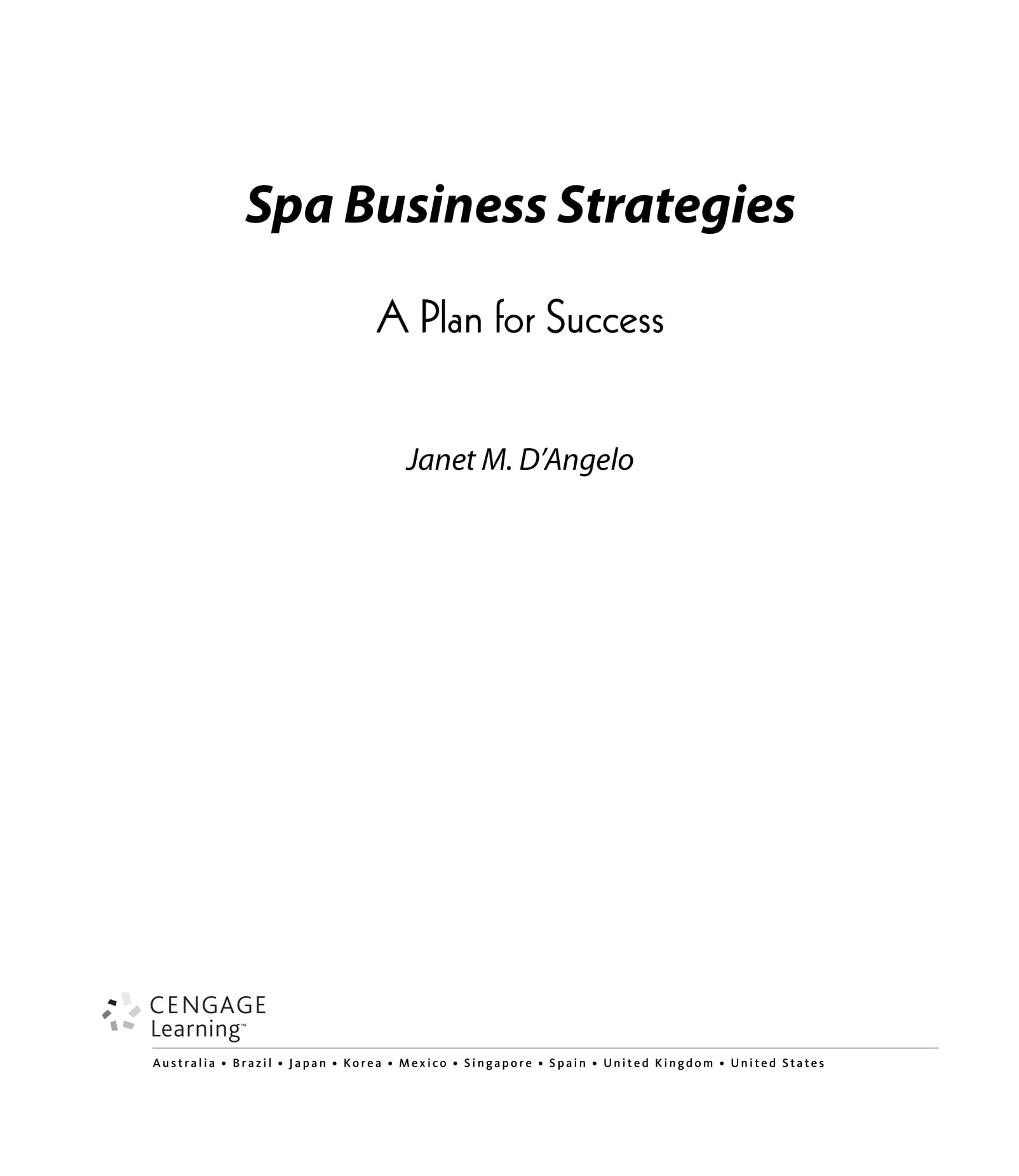 spa business strategies and massage therapy busienss plan example 01
