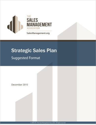 strategic monthly sales plan format example