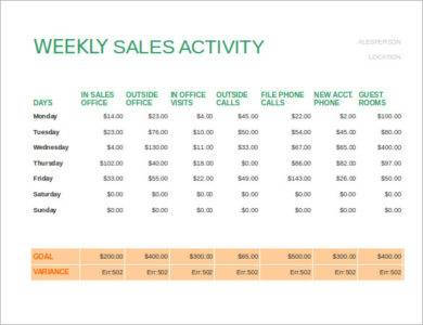 weekly sales activity report example2