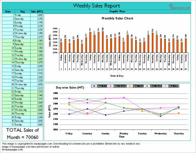 8 weekly sales activity report examples pdf excel