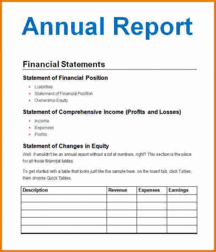 annual business report example