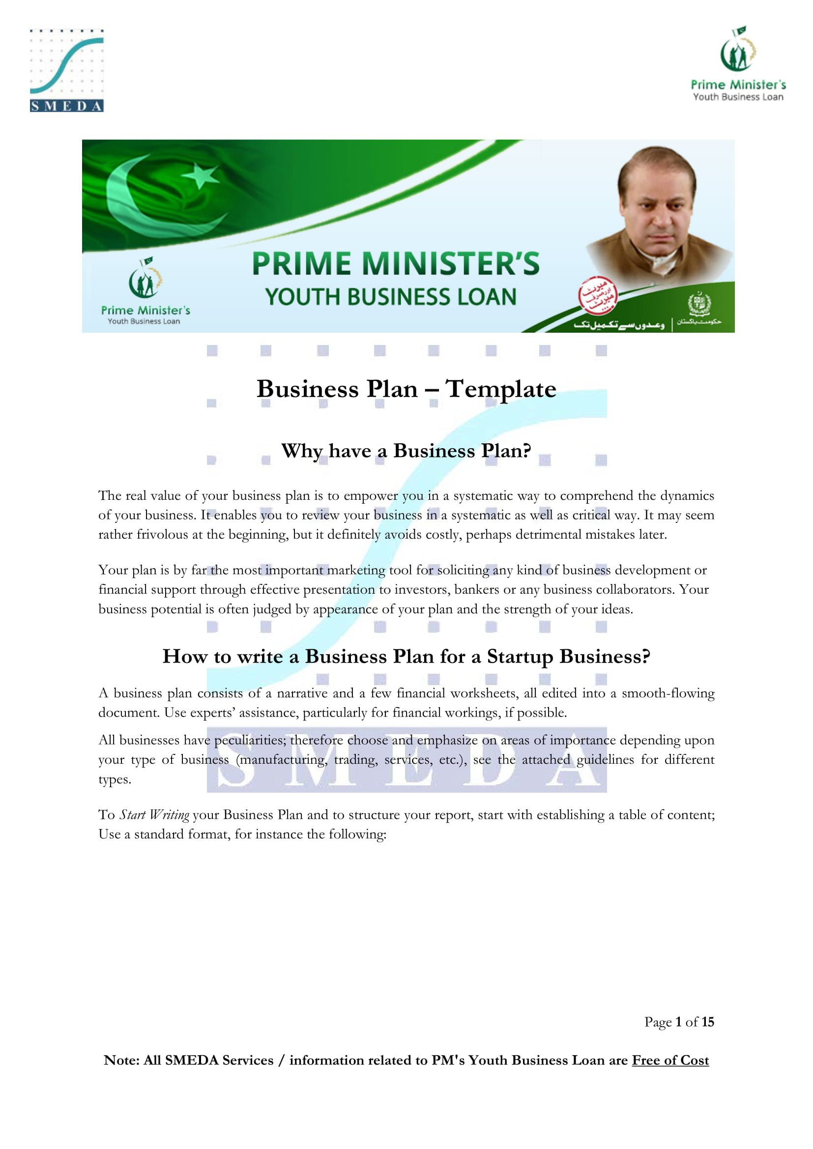 11  business plan profit and loss template examples