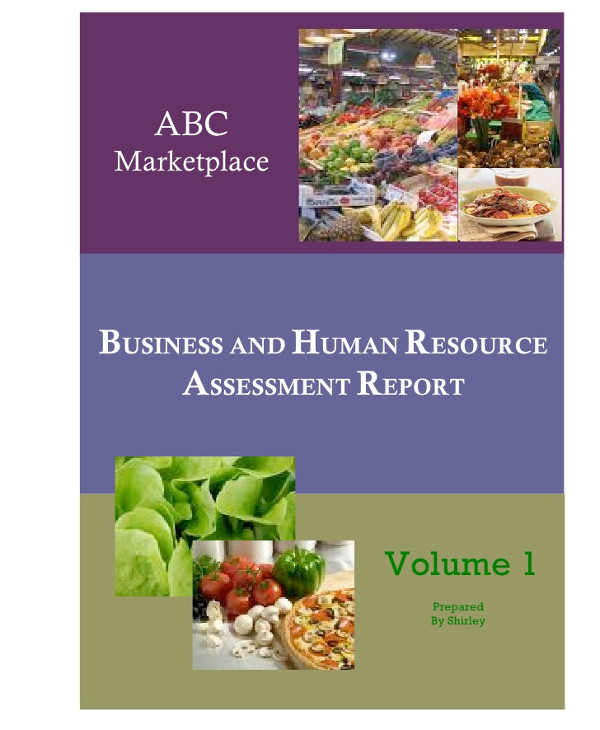 business and human resources assessment report1