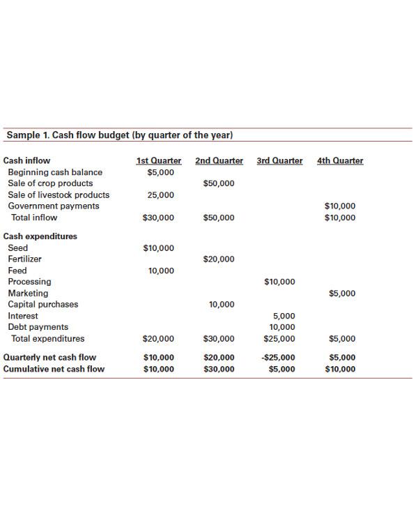 cash flow budget analysis