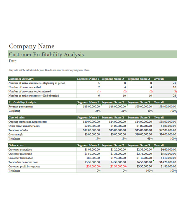 customer profitability analysis document example