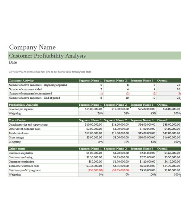 customer profitability analysis document example