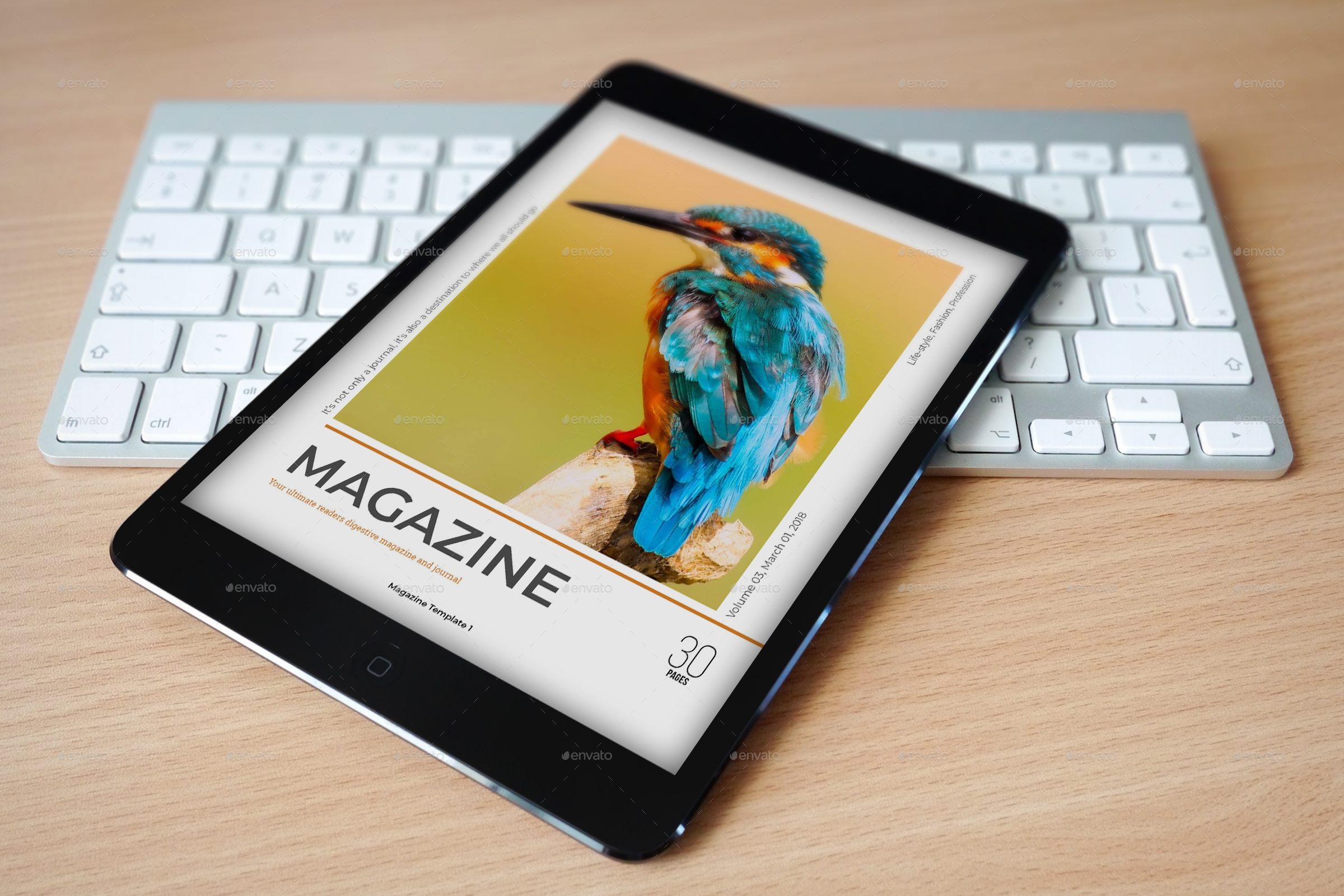 editable e magazine example