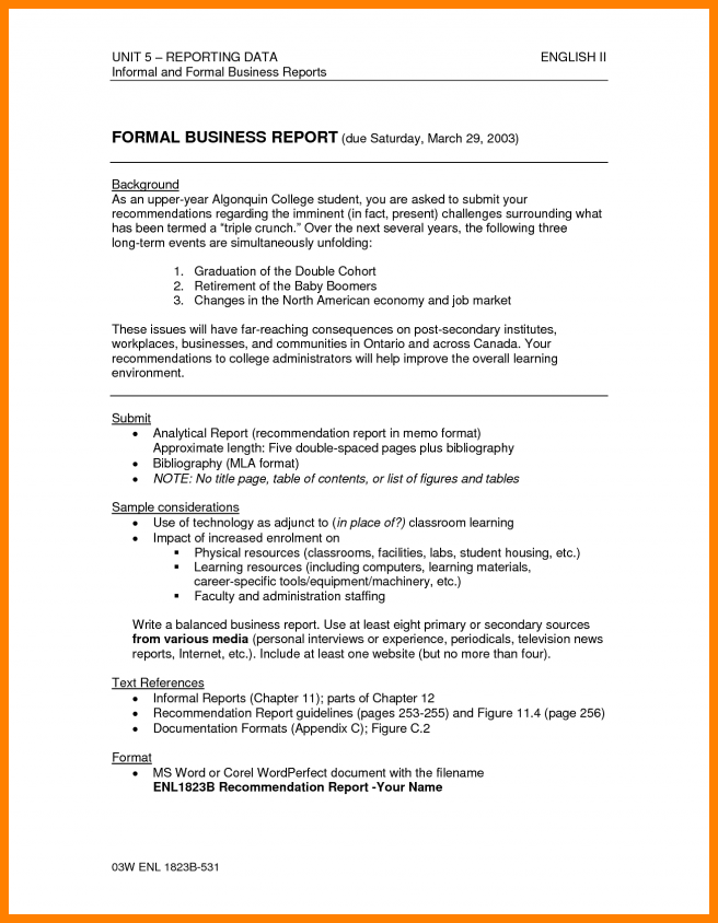 formal annual business report document