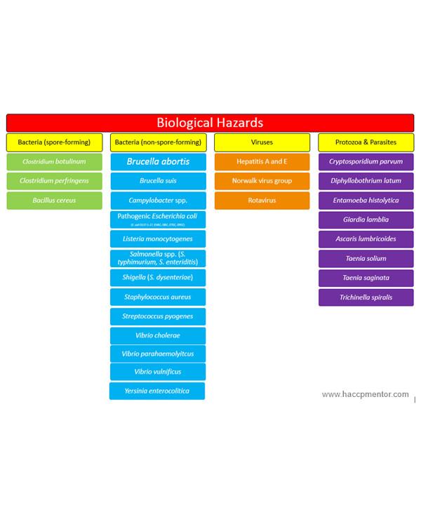 haccp biohazard analysis