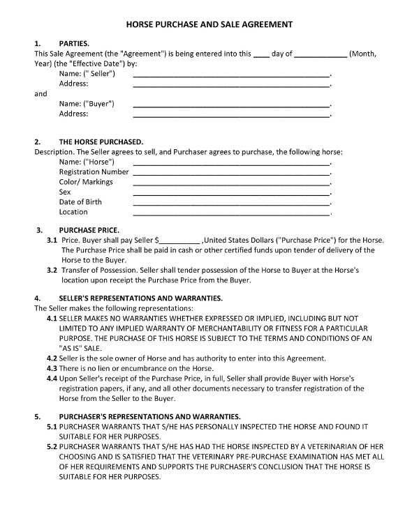 Horse Purchase And Sale Agreement Contract Example