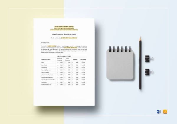 monthly financial management report template