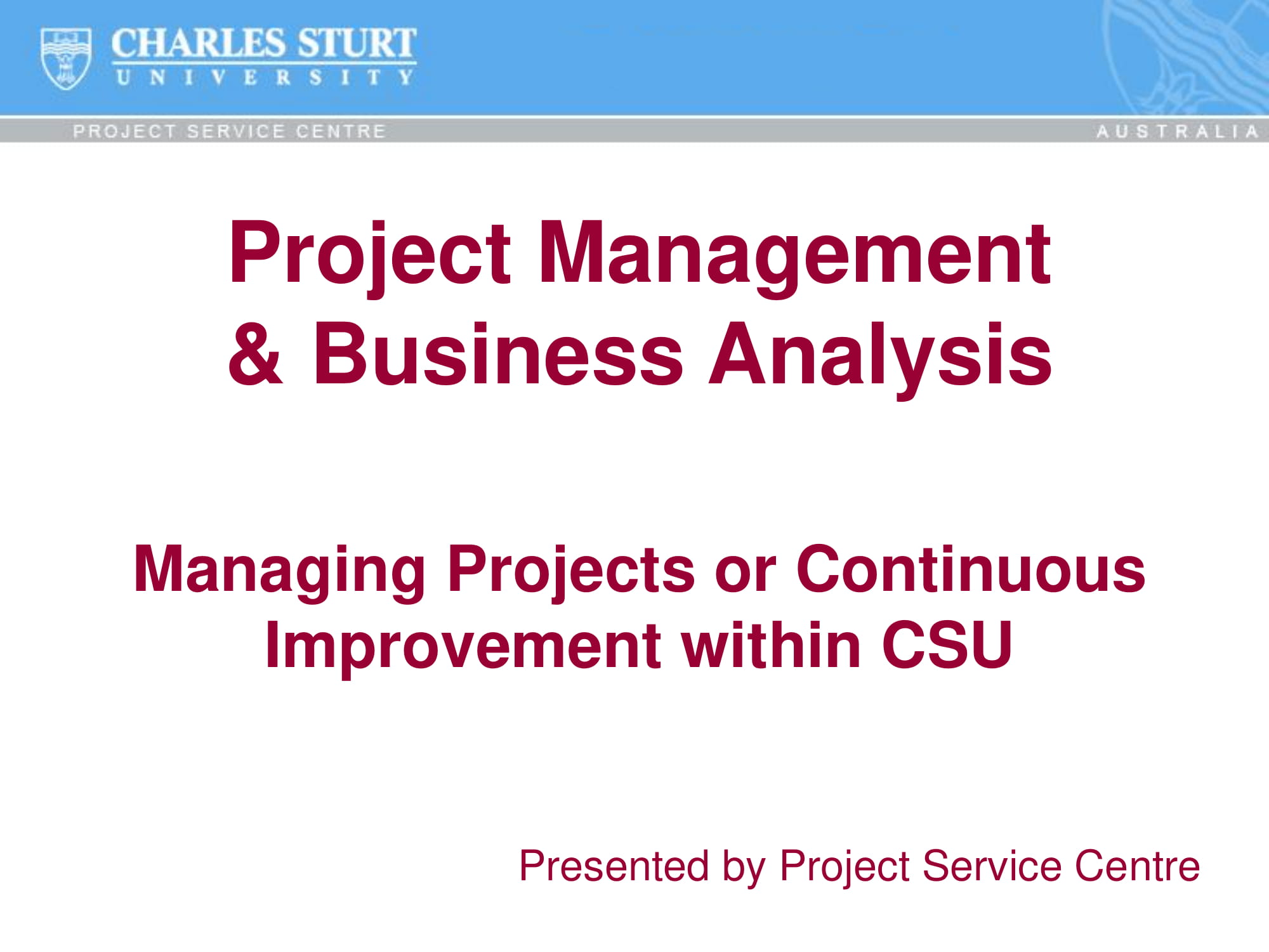 Project Management And Business Analysis Report Or Presentation Example