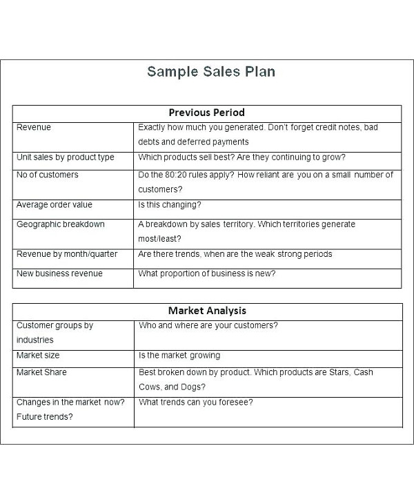 sample annual sales plan1