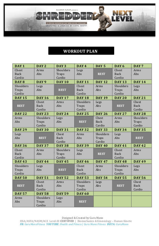shreed next level workout plan example
