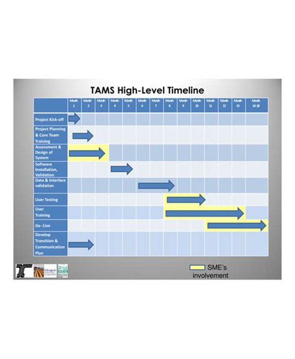 tams high level project timeline1