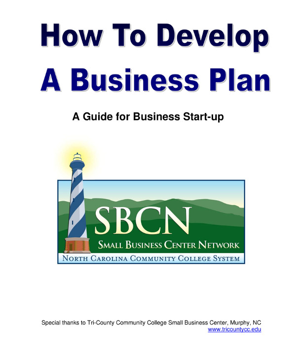 tech startup business plan guidelines example1