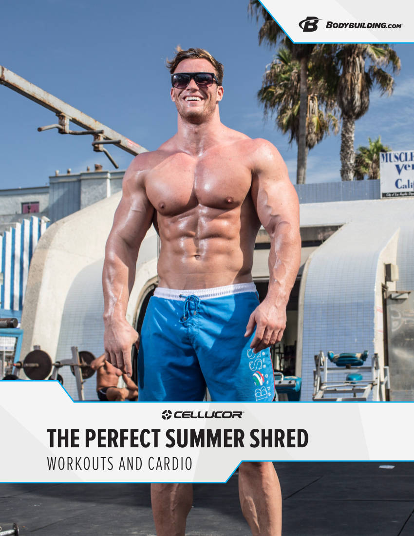 the perfect summer shred workout plan example