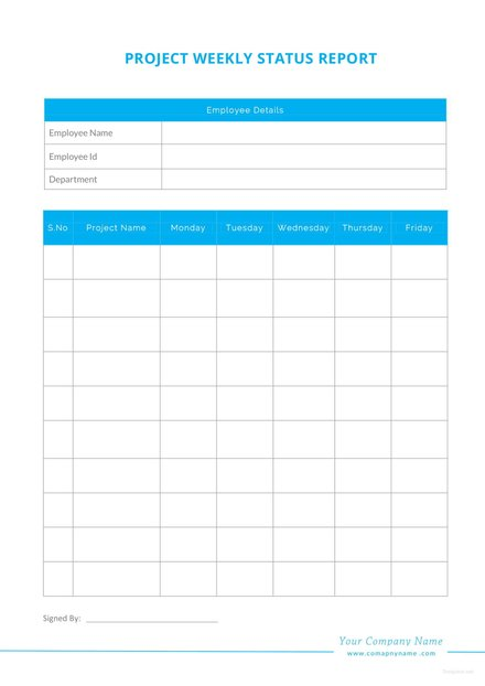 blank weekly project status report template