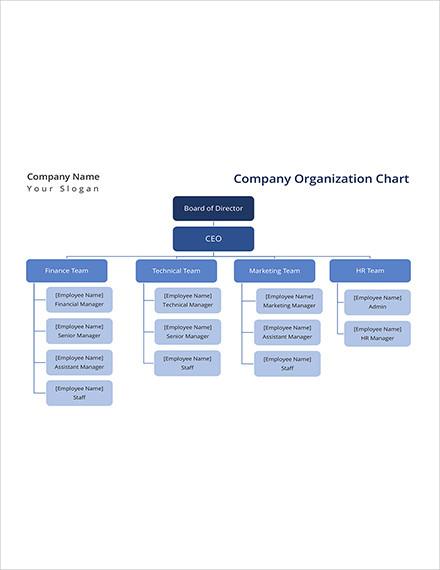 company organization chart template1