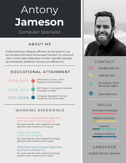 computer specialist professional resume template
