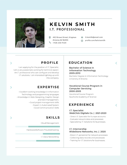 corporate it professional experience resume
