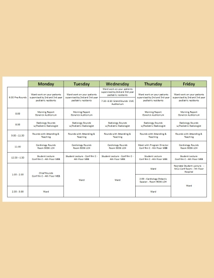 daily hospital schedule