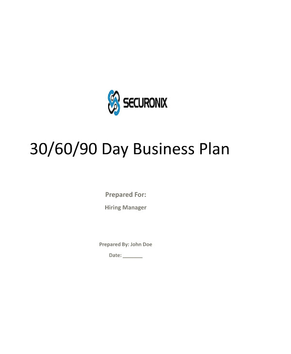 detailed 90 day business and sales plan example1