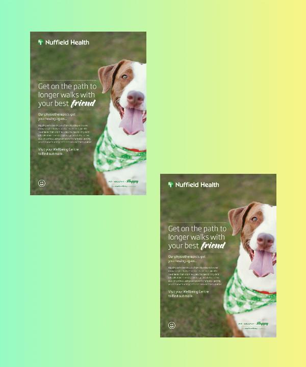 dog photography flyer