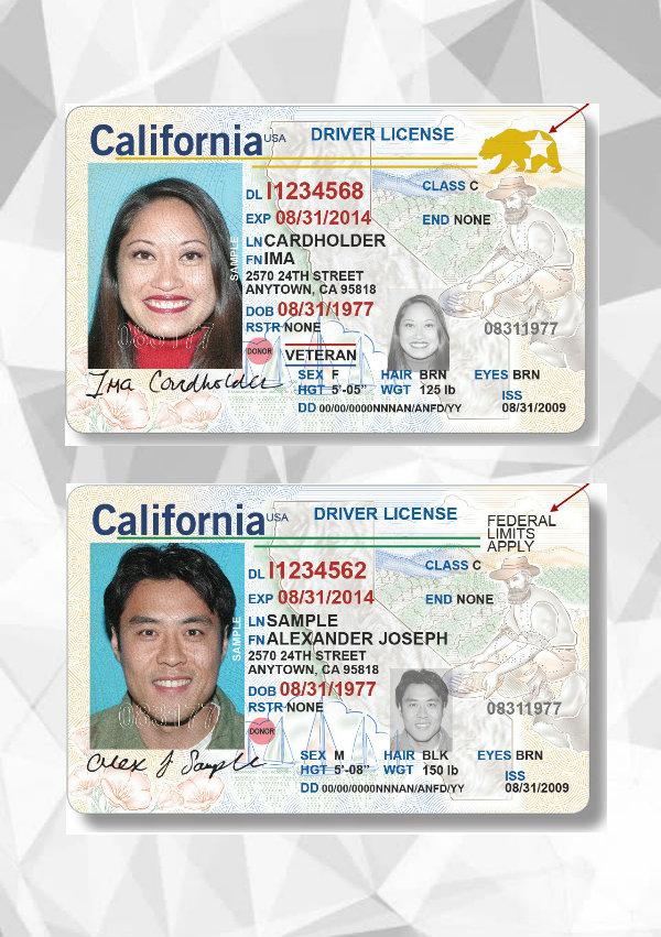 drivers license id card