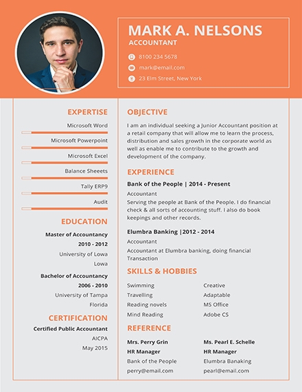 14 Professional Resume Examples Templates In Word Publisher