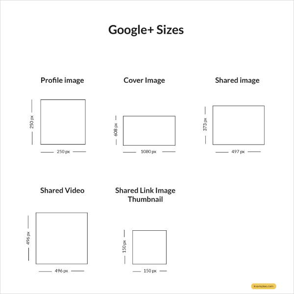 google sizes