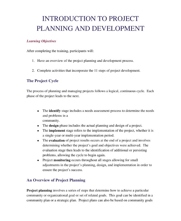 it project development plan example1