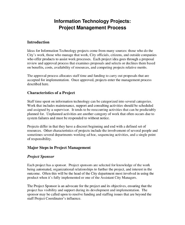 information technology project management plan example1