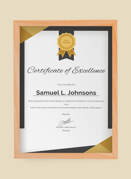 mock up certificate of excellence design