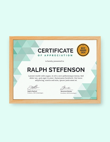 modern certificate of participation template