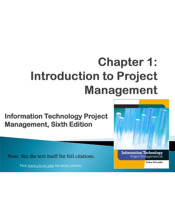 project management plan for it example1