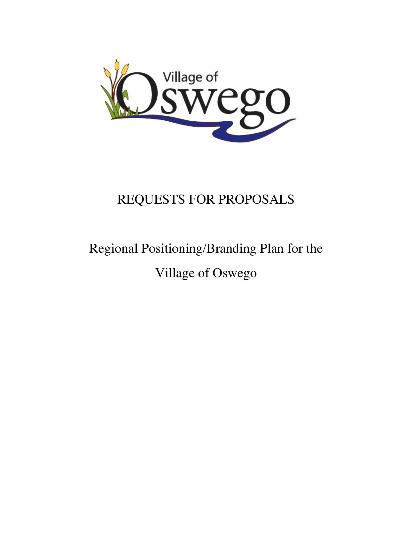 Regional Positioning Branding Plan Example