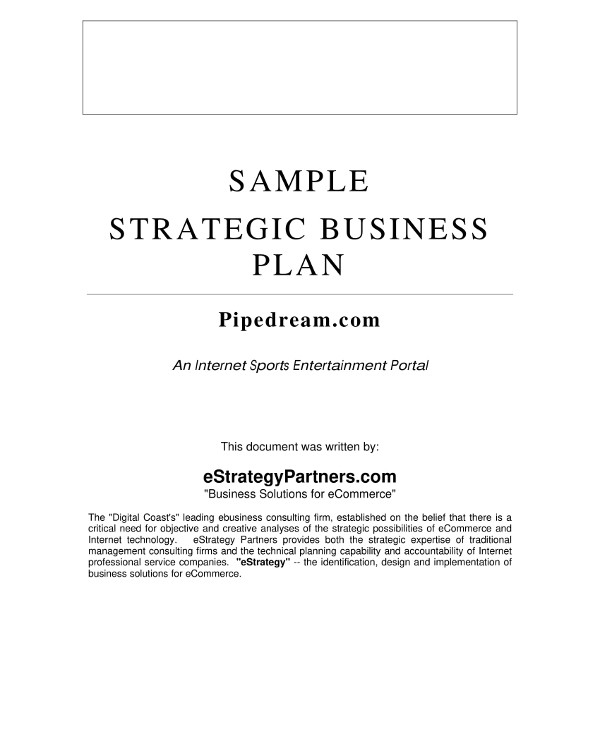 11 Marketing Consulting Business Plan Pdf Word Docs