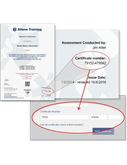 training assessment certificate tutorial sample