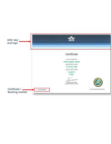 training certificate tutorial design