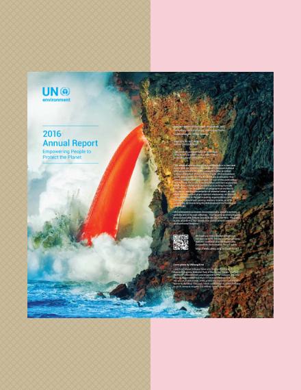 un environment annual report