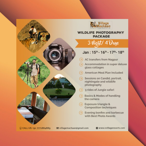 wildlife photography package flyer